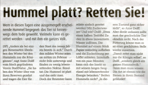Zeitungsartikel Hummel